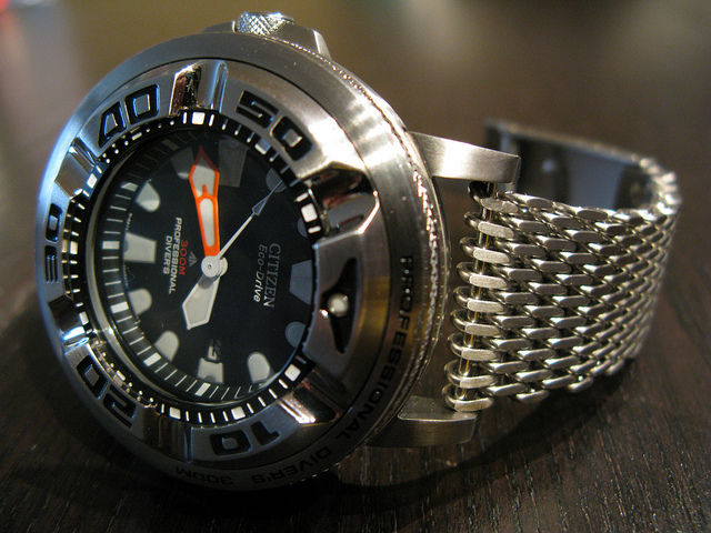 citizen pro master dive watch