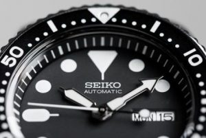 best seiko dive watches for your money